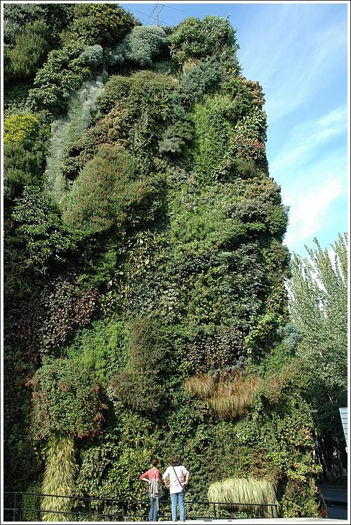 Gsky Living Green Walls: Patrick Blanc